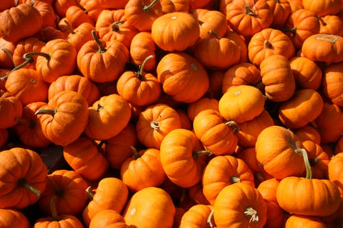 Halloween: Treats Without Tricks